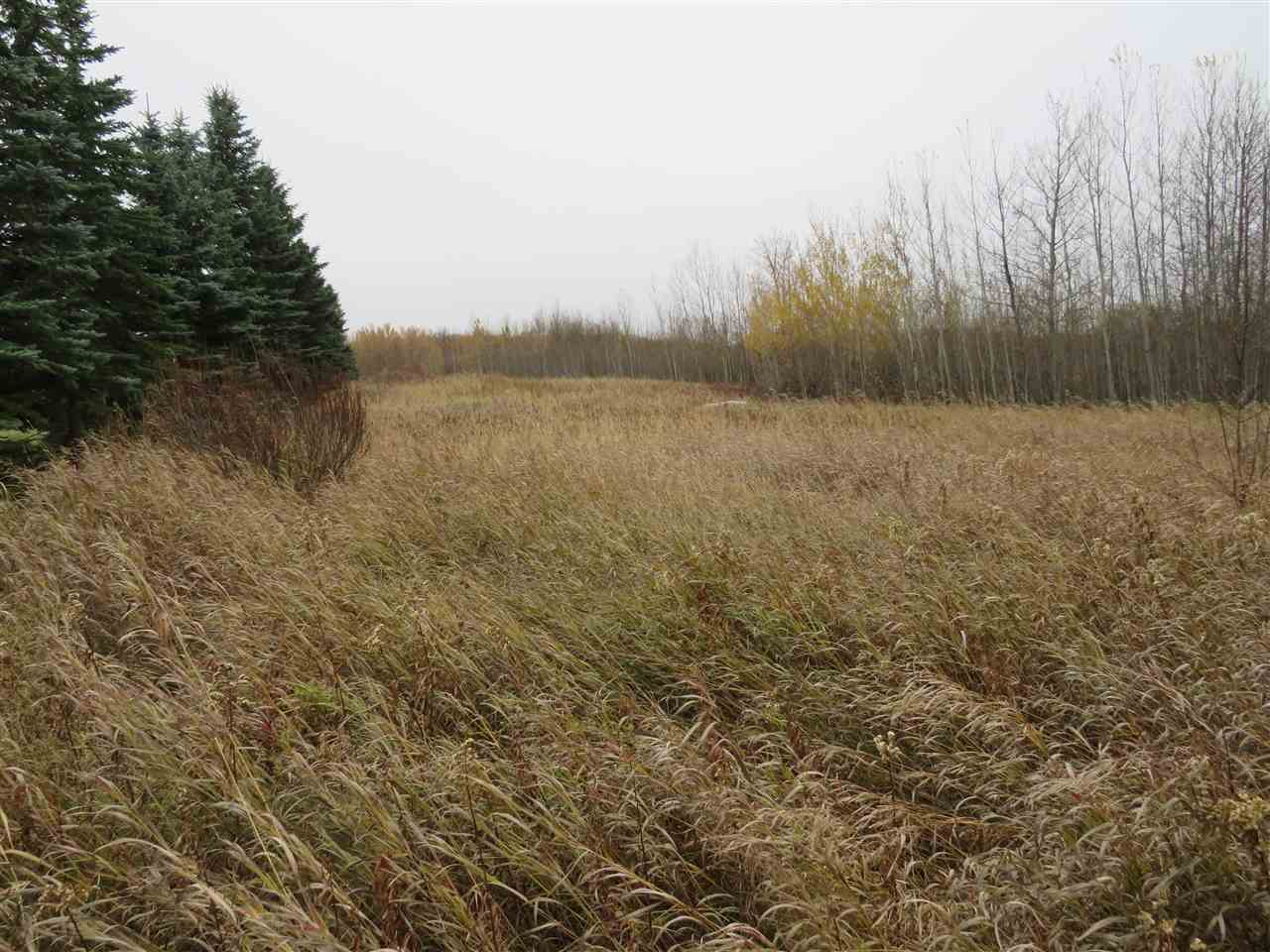 7.24 Acres in Aspen Estates located at 51422 RNG RD 195 within Beaver County.  Nicely treed acreage in a picturesque natural setting.  Convenient and quiet country location with easy access and commuting distance to Tofield and Sherwood Park.  Great walkout building site option; or recreational enjoyment.