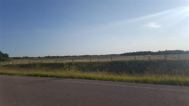 96.02 Acres located right on the pavement just 9 km from Ryley on Highway 854 North. Perfect place to build your dream home or expand your current farming operation. Services are at the road and G.S.T will be applicable. Only 10 mins to Tofield and 20 mins to Vegreville. Property has new perimeter fencing and road approach is about to go in.