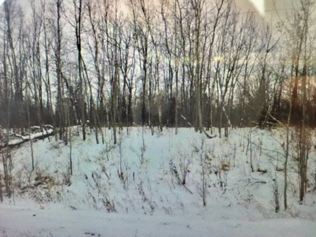 10 Acres! Vacant, treed lot in Mcree Acres subdivision - great location and perfect place to build your dream home or mobile home is possible as well. Across from this subdivision is crown land and The Ministik Provincial Lake Bird Sanctuary. To the back of this lot is Miquelon Lake. Great location for all kinds of recreation too - skidooing, quading, and whatever else you can dream of doing on your new acreage!