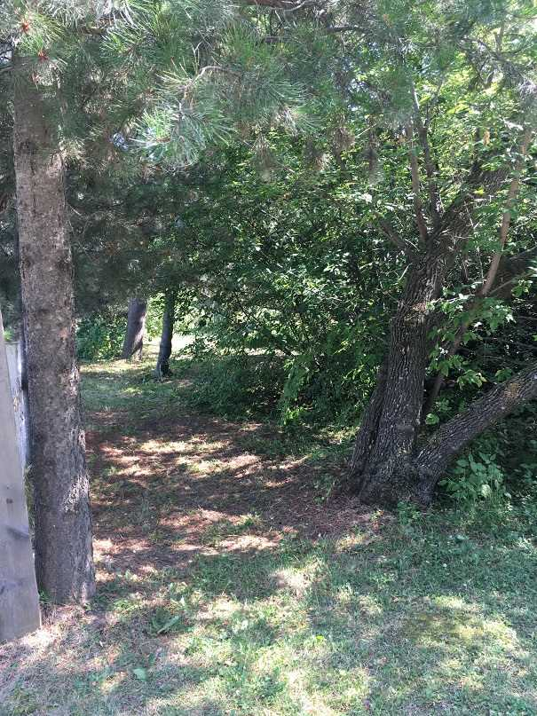 Welcome to Norris Beach! This vacant lot is treed for privacy, accessed by a paved roadway, nearby the lake, and awaits your future dream getaway. Within walking distance to The Village at Pigeon Lake. As well, there are several shops and restaurants in the area, as well as Black Bull Golf Resort. Services exist to the property line. 1 hour and 15 minutes to Edmonton or Sherwood Park, and less than 50 minutes from Wetaskiwin or Leduc. Make the lake lifestyle yours now!