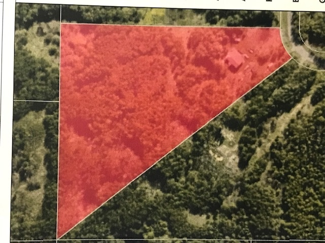 "7.75 treed acres!  There is gas and power to the existing home site.  There is an existing home on the property but there is NO access to the home   Sold in ""as is"" condition.  SELLER offers no warranties or representations.  NO RPR is provided and Schedule A must accompany offers"