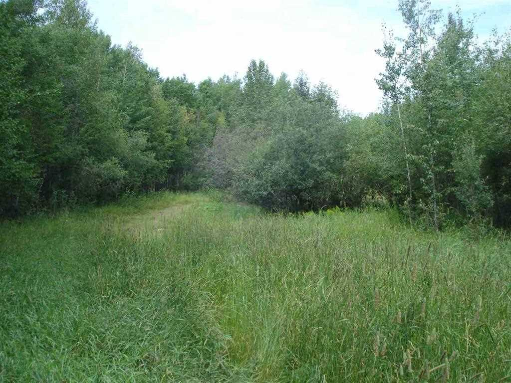 Almost 10 acres for less than a lot around the lake! Treed land ready to build near Mission Beach, Pigeon Lake. Nature at it's best with the lake, Provincial Park walking trails, nature conservatory all nearby. Exploring your own property you will notice many wild berries, stands of birch trees, aspen, poplar, willow trees and wildlife. Access Road agreement in place. Pavement to the property.