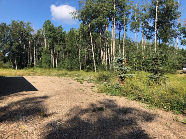 Affordable .46 acres of vacant land located at Poplar Bay at Pigeon Lake. Close to Village of Pigeon Lake, golfing & access to the lake. This would make a great summer getaway. Great building spots. Build your dream home!