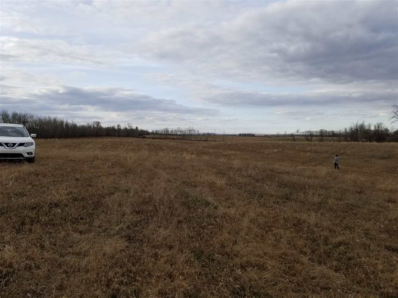 Looking for the perfect hobby farm location NOT IN A SUBDIVISION.  This 16.78 private acres of land along Fairydell Creek is very private and within 40 min of Edmonton. Approximately 16 acres of environmental easement are straddling this piece.Gently rolling hills provide the perfect opportunity for a walkout basement. Surrounded by trees, the open field is an alfalfa/grass mix. Located approximately 4 miles north of Lily Lake Resort and 4 miles West.