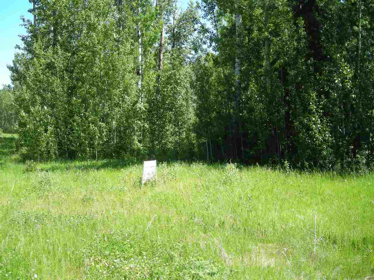 Almost a .5 acre in Village West Estates. Services to the property line. Large trees on site. Walking trails around the property, also a short walk to the Village at Pigeon Lake that hosts several shops, restaurants and services. Escape the hustle and bustle of city life. Build your dream cottage here.