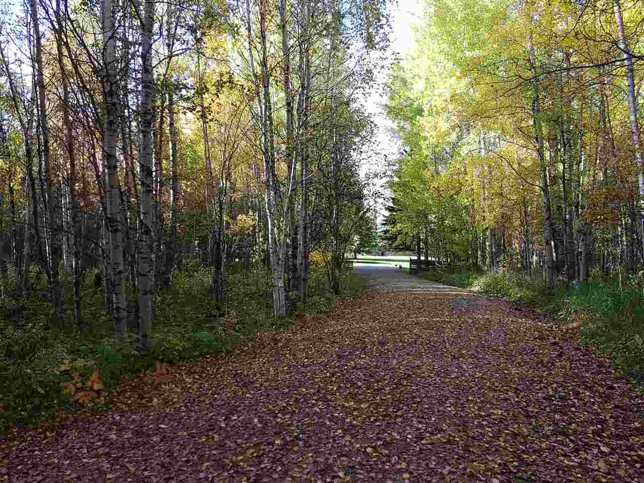 """Turn Key Opportunity awaits you at the end of the Winding Driveway leading to this Scenic 39.75 acres where you will """"UNwind""""! Serviced with Power, Well, Phone, Septic Holding tank. Main Cottage is 14'X31.5' with power, plumbing and is heated and insulated, 2 outbuildings 1@ 12x12, 1 @ 12X18. Main Cottage has a very open concept with Kitchen cabinetry at one end, dining/living in center, sleeping quarters at the opposite end. Along with new 3 pce bath. Buildings shingled in 2014. Trails to the large pond and through out the Mixed mature trees: aspen, birch, poplar and evergreens cover approximately 80 - 85% of the property with a creek running through. Wildlife galore and song birds are everywhere! Picturesque and serene and oozing with potential for your permanent home or a getaway retreat! Ideally located to Pigeon, Battle and Twin Lakes!! De-Stress here in solitude and tranquility! Yard is perimeter fenced and gated. Pavement to your gate!!! This is the parcel you have been waiting for!!!"""