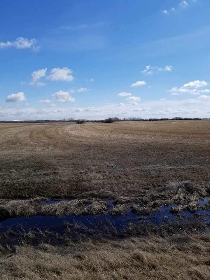 This could be the parcel of land that you've been waiting for.  It's located on a very quiet dead end road 15 minutes from St. Albert, north of highway 37 and east of highway 44.  There is only 1 developed acreage on this road and its located on the opposite side.  The possibilities are endless and the price is perfect.  Show and sell with confidence.