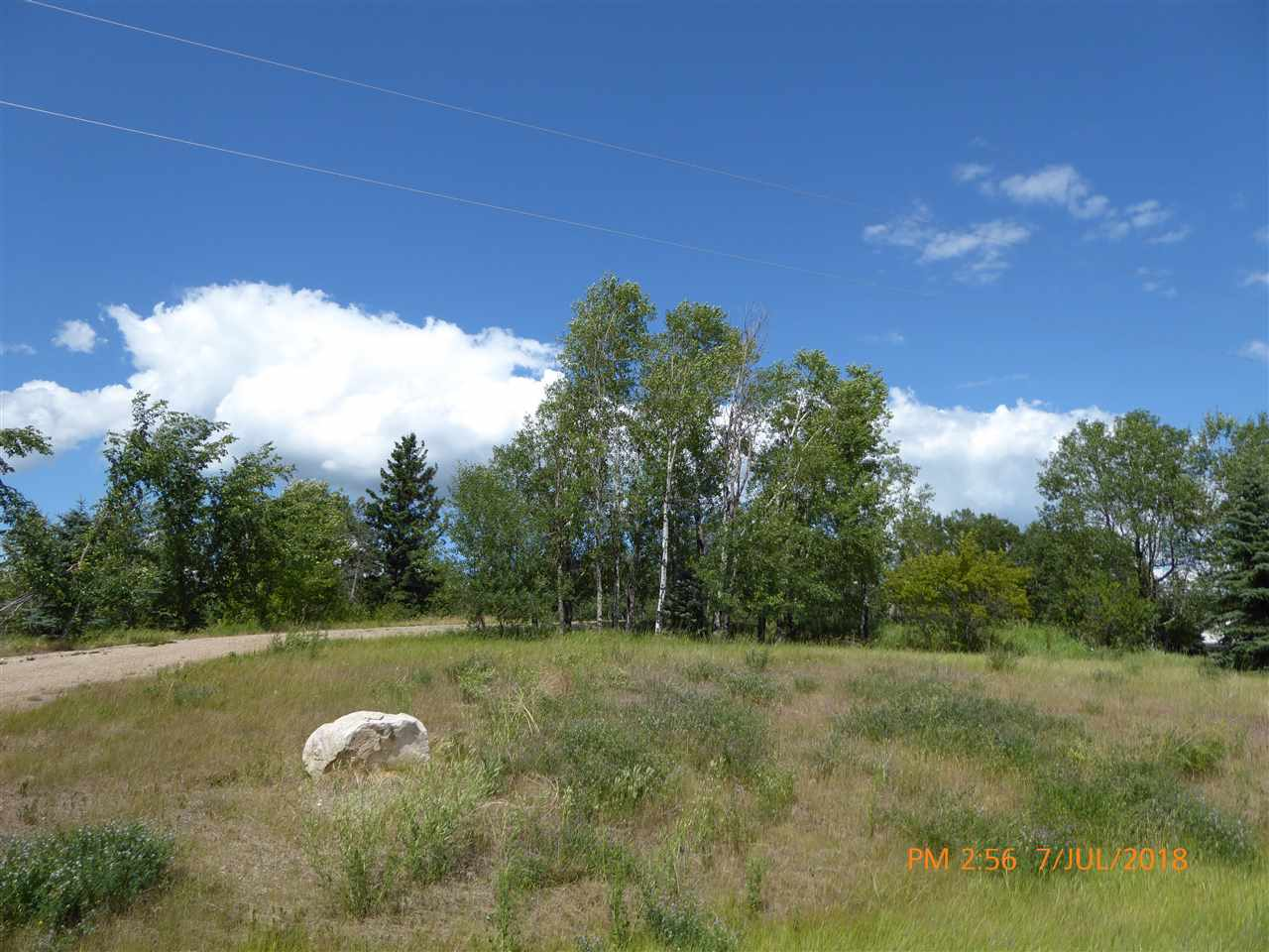 Great Acreage site, backs onto trees. High lot with great drainage. All utilities on site and ready for hook-up, including water. Great mature neighborhood. Quick Possession Available! Why wait? Build Now! Settle out in the Country before Winter!