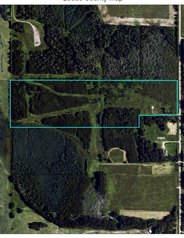 40 acres with a mix of trees and open land. Approximately 4 miles from Pigeon Lake. Great for building your dream home or weekend getaway. Lots of wildlife. Zoned Lake Watershed. Oil revenue $3520/year. GST may be applicable and responsibility of the buyer. Take Hwy 616 to Range Road 24-South one mile.