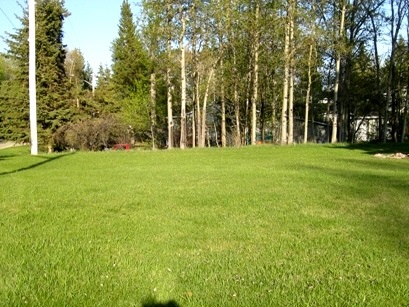 This nice and open corner lot is open with a few trees and is ready to build on in the Summer Village of Yellowstone. This corner lot is a good size with easy access to the water front through the park reserve. This will be the year to build!!