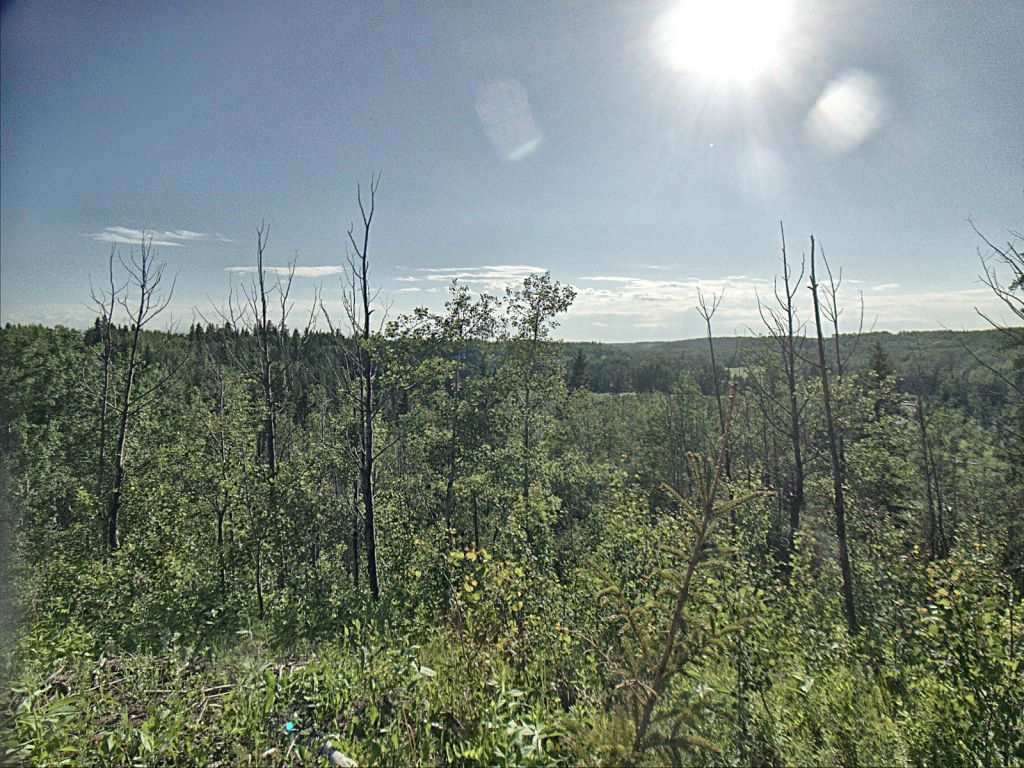 You will love the breathtaking ravine view on this 12 acre parcel of hillside land on Strawberry Creek. Offering an excellent opportunity as a retreat from the city, this property offers several locations for R.V parking. Located on Range Road 15, just north of secondary Highway 622.