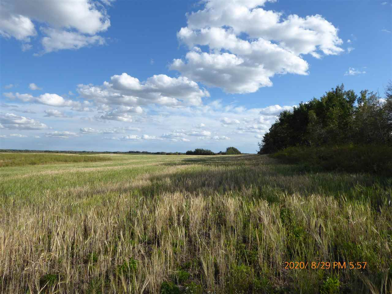 **Back of the market and priced to sell @ $104,900.** 20.03 Acres of land close to Tofield, Alberta, just 28 minutes East of Edmonton & Sherwood Park, located i mile off of Highway #14. This is a triangular shaped parcel, mostly cultivated acres - secluded area with trees lining the West side and bordering on the Railroad tracks on the North side. Not in Sub-Division. Power & Gas at the property line. **N.B. GST may be applicable on Purchase*.**