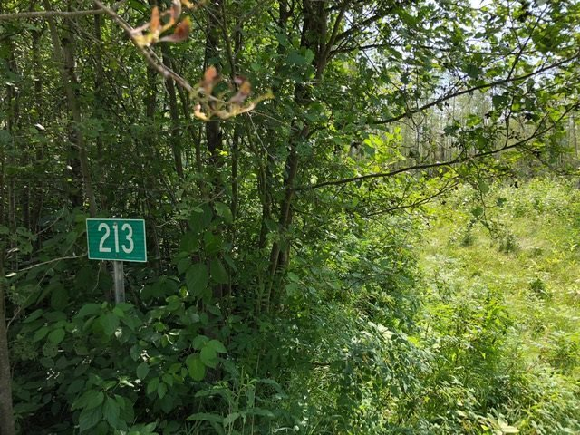 A peaceful place to call your own. A treed 0.51 AC Lot located in the Missawawi Lake area. It is located at the end of a quiet cul de sac. The entrance to the lot is on the North side. Allowing a future back yard to be south facing. Here you can build your own cabin/cottage or create a place to park your RV/RVs to camp. The lot has tall mature trees around its perimeter. The lot has power at the property line (not connected as lot is vacant; but Fortis can hook up the services once you desire to have power.) Seller has a quote on a package for a 2200 gal sewage holding tank, a H2200 Water cistern, Ext manhole and lids, Labour excavation & backfill of tanks. Install high & low water alarm & permits. (LOT Details East 207.16' SOUTH 152.69' West 223.62' North 140.70' based on info provided by county).