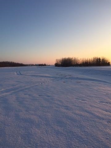 Very affordable 3.87 flat and partially treed Acres in Braun Village with services at the property line. 30 minutes to outskirts of Edmonton, 14 minutes to Legal, and 25km to Redwater.  Great property to build your dream home and enjoy country life