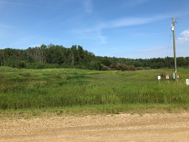 WHAT A GREAT 3.39 ACRES BESIDE AN ENVIRONMENTAL RESERVE 15 MINUTES FROM STONY PLAIN ! There is a nicely treed building site for privacy. Services are at the property line and there are minimal building restrictions. Contact Lac Ste Anne County for building requirements. This is the perfect location to build your dream home and enjoy the tranquil living in the country. THIS PROPERTY IS A MUST SEE !