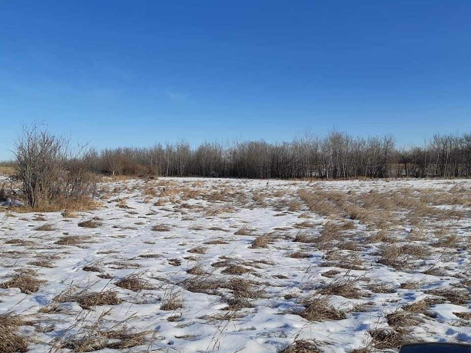 Prime future development parcel in the midst of Sterling subdivision within the Big Lake area structure plan. This 36.94 acres is located South of Starling subdivision and across the street from the Trumpeter subdivision. Rolling treed land with sight services in close proximity to subject lands and the land to the north could be bought and packaged together. Show and sell with confidence.