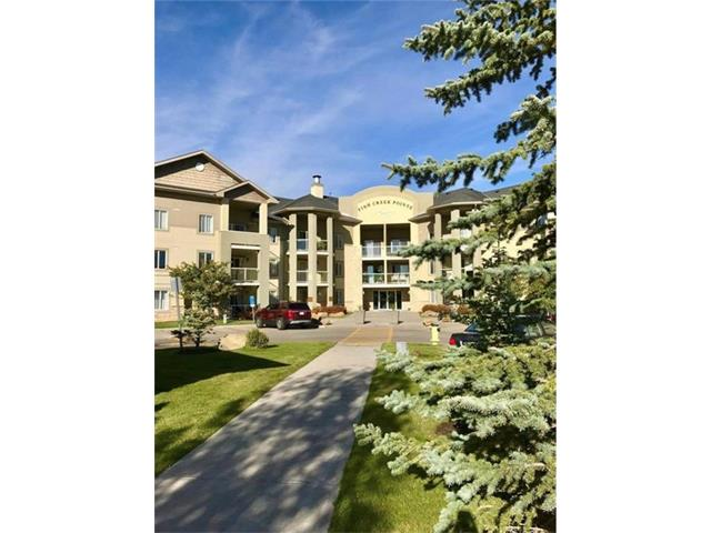 Amazing condo! This unit is exceptionally well cared for, has lots of space and great natural light. This is a large 2 bedroom and 2 bathrooms, with an oversized South facing patio. This unit has a large master bedroom with a walk-in closet and ensuite, in-suite laundry, in-suite storage, a titled underground parking stall and an additional storage room. This is a must see unit! Great for a family or an investment property!