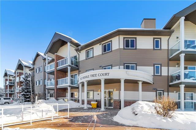 This top floor unit is a must see for not just first time home buyers but investors as well! This unit has in-suite laundry, a spacious kitchen, raised breakfast bar, and a dining area in tandem with an ample living room. You'll appreciate the great views the unit gives due to overlooking the neighbouring community. It also offers a vast master bedroom with a walk-in closet leading to your very own 4-piece ensuite bathroom. The home is completed with a second generous bedroom, a second 4-piece bathroom, and a spacious balcony that can easily hold your BBQ and patio furniture and provides a great spot to soak in the rays and just enjoy the outdoors! During the winters you?ll be glad to be the owner of a titled parking spot in the heated underground parking. Situated in the desirable community of Saddle Ridge, the building is close to bus stops, the LRT, Genesis Centre, playgrounds, schools, and the Saddletown Circle which has a large variety of amenities within such as restaurants, banks, and shopping.