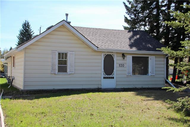 Tiny cottage-like house on a huge lot! Excellent location. Large trees to the south create some summer shade. Huge back yard with lots of room for parking and playing. Tot lot right next door and riverside park immediately across the street.