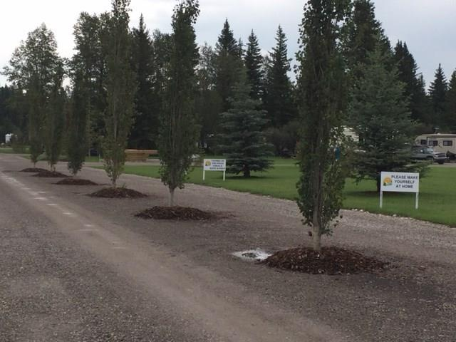 WELCOME to Sundre River Resort - RV Lots for sale! Only one hour to Red Deer or Calgary. Sundre River Resort is nestled amongst tons of trees and the Bearberry River. Fifty Acres of Natural Trails, through Forest and the Berberry River which offers breathtaking views around every turn. Park is well underway with State of the Art Bathrooms including Showers, Laundry Facilities, Swimming Pool is a new Addition, Playgrounds, Soccer Field, Ball Diamond, Horseshoe enthusiasts we have that too. Numerous Golf Courses nearby for the Golfers too.  Lots are priced at $49900 and up depending on size and location. One of the Nicest RV parks around AND they include a Shed with each purchase!
