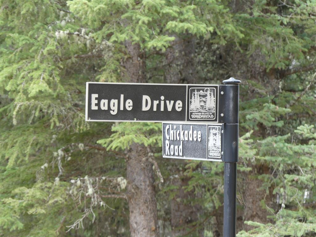 Welcome to 14 Eagle Drive, located in the charming Village of Waiparous.  This idyllic 0.48 acre lot is backed onto the Wildcat Hills, nestled in the Foothills and surrounded by world-class landscape and wildlife. With paved access all the way from the city this property is less than an hour's drive from Calgary, yet offers a lifestyle of peace and enjoyment of nature that is a world away. Build your cozy dream home in the woods or enjoy a private camping spot with power and a little rustic bunkhouse already set up for use.  This corner lot is nicely treed and is just a few minutes walk to the Waiparous Creek. Take a drive and have a look at this special piece of land.