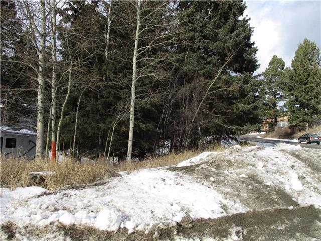 Sunny South Facing Corner Lot backing onto Municipal Property with Mature Trees. Amazing views are enjoyed from this location. This oversized lot is located in the Established Subdivision of Pineview in Coleman. If you are looking to build your dream house this lot may be the one! Services on or near the property. Irregular sized lot.