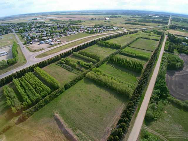 "Great Location . Now is the time to buy in Bowden.  Excellent location for truck terminal or other uses. 31 acres of Prime Land located in the North section of Bowden, AB . Adjacent to Hwy 587 , Hwy 2A and with Highway QE2 exposure and virtually Instant access makes this parcel very desirable. This Land is within the Town of Bowden which has a very pro active attitude for development. It is scheduled under the ""Intermunicipal Development Plan"" between Town of Bowden and County of Red Deer to have future usage of Commercial and Residential Zoning.. Call listing Realtors today."
