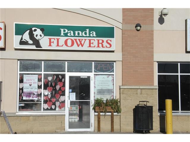 Great opportunity to purchase an established franchise flower shop. Located in a large, busy Country Hills shopping area with great draw from other businesses and amenities. Tons of parking out front for customers.  Fantastic franchise support for core sales activity.  All equipment and existing stock included for a turnkey operation.  Call lister for details.