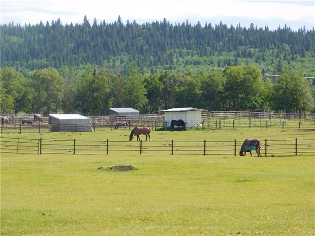 Calling all Horse Lovers!! Equestrian facility !! The subject property is Rocky View County, approximately 10 miles west of the Calgary city limits.The subject property is improved with a residence, 2 hay sheds, an indoor area with office, two apartments above the office,round area, 48 indoor horse stalls,and tack storage rooms,pens and paddocks, and an outdoor area. Great location .