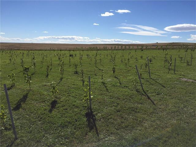4 Acres. 1/2 mile of Gravel. Agriculture. 