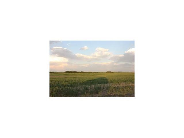 3.50+- Acres close to Strathmore!  Adjacent 4.60 Acres are also available.  Environmental, Wastewater and Groundwater Data reports have been done on the land.  Head East from Strathmore to RR 241, go south approximately  1-2 km.  Land is on the east side of the road.