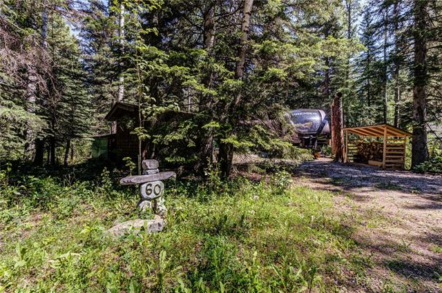 POPULAR BERGEN SPRINGS RETREAT  NEAR SUNDRE. THIS UNIT HAS A FULLY RENOVATED OLDER  BUT SMALL RV(KITCHEN WITH SITTING AREA, 3 PCE BATH & BEDROOM) WITH AN ATTACHED COVERED DECK FOR A 2ND KITCHEN WITH A STOVE & SINK, ETC RECREATION ROOM.  ALSO HAS A CABIN FOR GUESTS & A WOOD STORAGE BUILDING & STORAGE SHED. ---- WHAT A GORGEOUS LOT IN A GREAT LOCATION  CLOSE TO THE CLUBHOUSE---- SELLERS PAID $80,000  RECENTLY BUT WANT TO SELL---CAPITALIZE ON THEIR IMPROVEMENTS----YOU CAN ENJOY JUST AS IT IS OR REPLACE THE RV WITH A CABIN----  WHAT A DEAL!---- WHAT A LOT!---- BERGEN SPRINGS IS A RECREATIONAL DEVELOPMENT WITH 175 SMALL ACREAGES ON 120 ACRES & A STOCKED SPRING FED POND ---PLAYGROUND FOR KIDS----RAISED GARDENS FOR THOSE WITH GREEN THUMBS----SUITABLE FOR LONG WALKS IN THE WOODS (CROSS COUNTRY TRAILS FOR CROSS COUNTRY SKIING---- SKATE ON THE POND---DRIVE THROUGH BERGEN SPRINGS VIEW THIS UNIT----CALL ME IF YOU LIKE WHAT YOU SEE--- GO TO MY WEBSITE & FOLLOW LINKS TO SEE A VIDEO----FINANCING?????. LET ME HELP