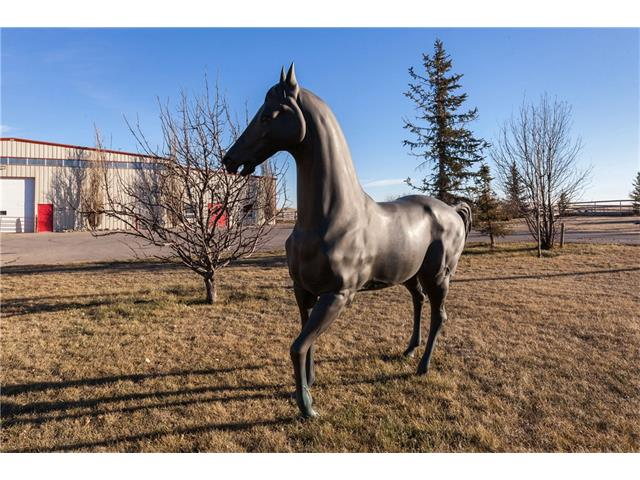 Perfectly set up Equestrian Facility with an easy commuting distance to Airdrie and Calgary. The 80 x 200 heated indoor arena features newer no dust footing and is attached to the heated 26 stall barn. Stalls all have auto water, open front doors and rubber mats. There are 2 wash racks, 30 + tack lockers, 2 private tack rooms, feed room and laundry room with blanket hangers . Outside the are 20 + paddocks, numerous fields for boarding, 85 acres in hay,auto waterers in paddocks and fields,lunging ring, shelters, 48 x 120 hay/shavings shed and a 200 x 200 outdoor riding ring. There are 4 separate residences on the property ( 3 suites in main house and a 3 bedroom mobile home )which offset facility wages. The homes have newer roofs, siding and landscaping. Comes with 2 tractors, Gator, cart, arena groomers (2) . Jumps etc. may be available for purchase. Super Opportunity at a great price to just move on and get to work !!!! More information available on request.