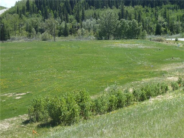HUGE 1.27 ACRE RESIDENTIAL LOT IN PRIDDIS  *** Only $229,000 INCLUDING GST *** A short 9 minute drive west of Calgary on Hwy 22X *** LOADS OF ROOM TO BUILD YOUR HOME AND A SMALL SHOP IN THE BACK. ***  No restrictive covenants or time frames.
