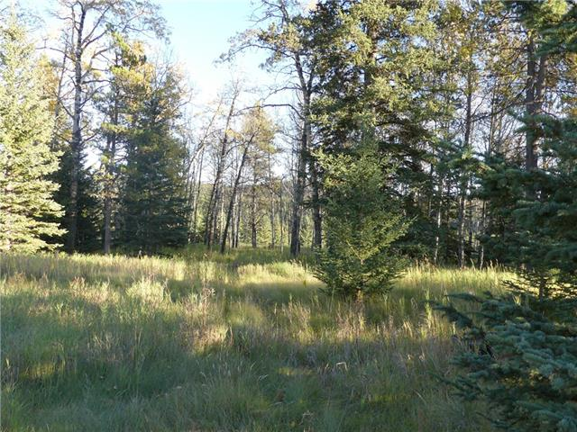 Beautiful treed 1.59 acre parcel backing onto Municipal Reserve just 45 minutes West of Calgary! This pie shaped parcel is located just past Waiparous Village, where you can enjoy the peace and relaxation of nature without ever having to leave pavement! There are endless opportunities for recreation and enjoyment of this magnificent landscape right at your doorstep. No building commitment on this South facing lot and plenty of great locations for positioning your dream home in the country.  Bighorn County zoning is: GRCR (Ghost River Country Residential).  Make this your weekend get away or full time residence in the Rockies!