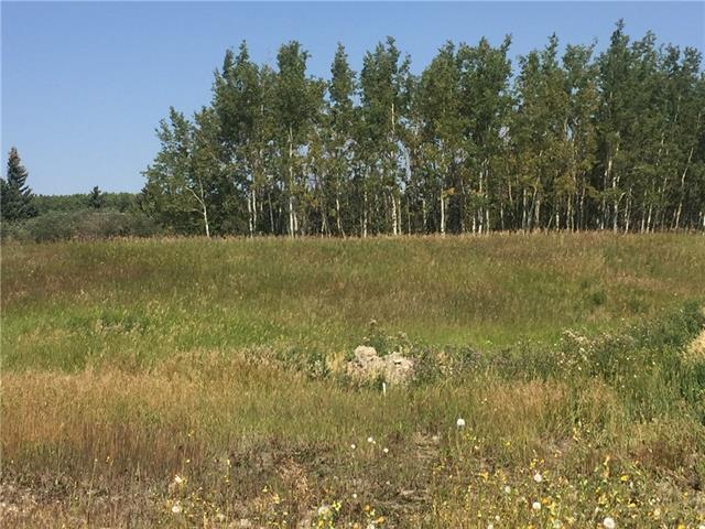 Amazing views, great building opportunity with the builder of your choice! Enjoy this great lot with trees, pond, wildlife and privacy all in one. And did i mention the view?! Perfect lot for a walk out build. This subdivision is on water co-op and the water license is paid for for this lot. Take a drive out, only 7 minutes to the Co-op shopping centre. So close but yet so far. Country residential living at it's best. Call now for a chance to view this amazing property.