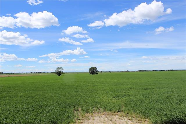 A remarkable investment opportunity to own 80 raw acres annexed by Strathmore. Located just to the north of Township Road 244, this land offers incredible future development opportunity and is ideally located to offer a wide array of future options. Also available to purchase is adjoining 120 acres with luxury estate home MLS# C4223468. Flat land, & excellent for future access. This is a rare opportunity.