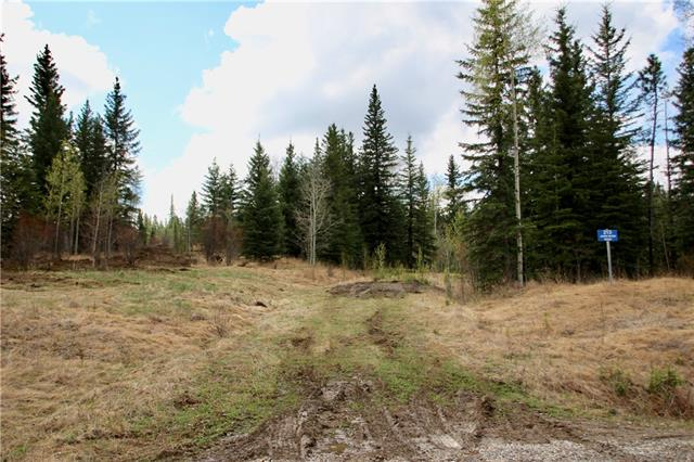 Develop your dream home from scratch in the natural and secluded beauty of James River Retreat, a gated bare land condo community. This lot is perched on the side of the valley with some great building options. Only minutes from the wilderness experiences of the eastern slopes of the mountains, but less than two hours from Calgary. This 2.79 acre lot can be your year-round weekend getaway or your summer snowbird nest! This lot is covered in a mix of spruce, aspen, and poplar and has some unique topography. Electricity and gas are at the property line.