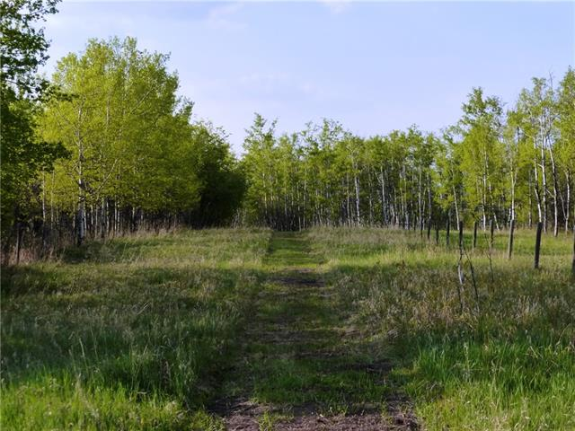 Take a walk on this very private yet close in 4 acre property. Lots of trees to protect your privacy and seclusion yet you can open this parcel up to a partial view of downtown Calgary. Paved access to your gate and easy commute on the new Stoney Trail. Excellent water well, power on the back of the property. Sweet location half way between Priddis and Red Deer Lake, north of Highway 22.  Please close gate when you leave.