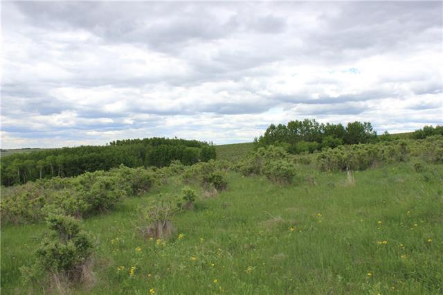 Only minutes from Cochrane off Horse Creek Road. Beautiful softly rolling land with various patches of trees throughout. Suitable for excellent grazing/agricultural now, or investment/development potential. Land like this does not come available for purchase very often! Spectacular mountain views.