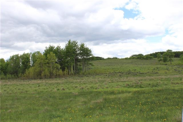 Only minutes from Cochrane off Horse Creek Road. Beautiful softly rolling land with various patches of trees throughout. Suitable for excellent grazing/agricultural now, or investment/development potential. Land like this does not come available for purchase very often!