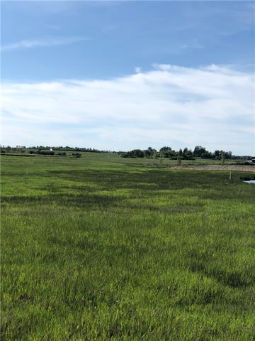 Are you looking for the perfect place to raise your family? Build your dream home? This lot is just minutes from Strathmore and the views are breathtaking. Perfect location to build your own road, add services and enjoy country living! Please call before entering property as there are animals on the property. Enter through Encana gate.