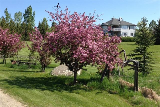 OPEN HOUSE Sept 14 12-2pm**Fantastic location just outside the Calgary southern city limits beside Red Deer Lake! This 7.46 acre property has a walkout bungalow with a gated driveway & amazing landscaping with rocks, ponds, 2 bridges, shrubs, flowers and tons of trees. Private patio, covered deck, wrap around veranda and a double parking pad at back with hot tub hook up. Upstairs there are 2 bedrooms, full bath and master ensuite, kitchen, breakfast nook and living room with fireplace and laundry. Downstairs in the walkout basement, there is another full bath, 2nd family room, den & 2 bedrooms all with high ceilings. This home boasts an open floor plan with lots of windows and 9 ft. ceilings. Kitchen has breakfast bar, stainless steel double oven/stove & dishwasher. Low maintenance flooring for pets. Triple attached garage with heated workshop bay & pet wash. Spacious shed matches the home, extra detached double garage & a Quonset (24'x42') with a 14 ft door for your motor home storage.