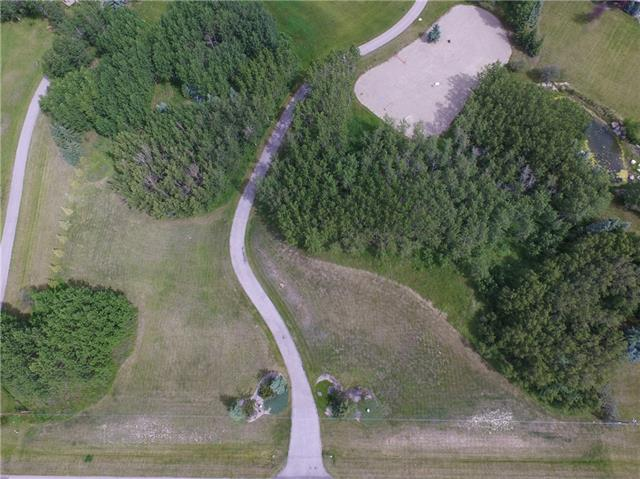 Exceptional lot situated on a flat site with mature trees for privacy in Bearspaw! This lot would be the perfect place to call home located in an established area with estate homes, easy access to Calgary & Cochrane and serene setting. The lot is fully fitted with a sand ring to ride your horse, electrical services, cable services, community coop water, and natural gas.