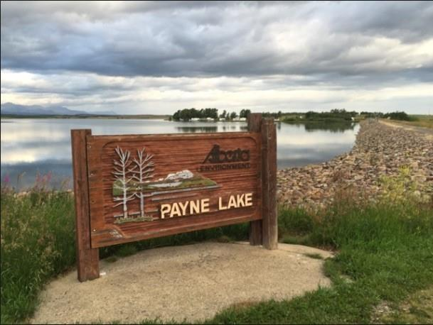 This country residential subdivision contains 6 acreages (~3 acres each) on the Southeast corner of Payne Lake Provincial Park with access directly off the county road. The lots start at the dam and follow the road down almost to the provincial campground and boat launch. Each lot has great tree coverage for protection from the wind but elevation in the lots can allow buyers to build with views above the tree lines. Lots are being offered at $219900 including GST. Whether you are looking for a recreational getaway location or a long term dream location, this property has much to offer. While it is on the boundary of the Provincial Park it is also within minutes of Waterton National Park. The price on these lots includes the approaches, country required drainage infrastructure, electricity and water lines to the property line, taking away much of the cost to get you finalized and on a lot in this beautiful area.
