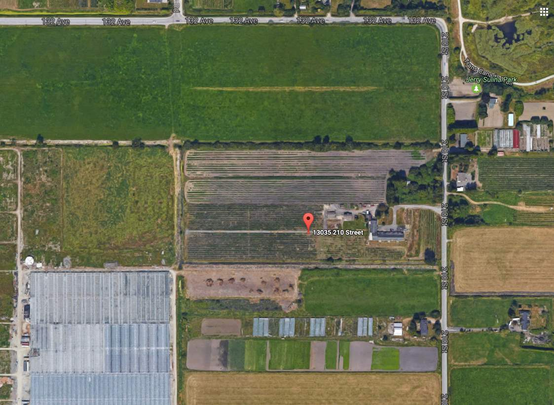 FARM IN ALR, 7.5 Acres of Blueberry Plants in a 9.08 Acre A2 zoning land. Loads of potential with separated living areas. Designed like Multi-family 5 units totalling 25 bdrm & 18 bathrooms. Use complex to house workers or 2 barns at 30x40 & 20x40 workshop. Easy access to Golden Eagles Bridge, close to shopping, golf course, great views of Golden Ears Mountains. 3 units are 3000 sqft each, Unit 4 is 3600 sqft. Zoning allows for different types of uses for example: Boarding, Commercial kennel, Temp tourist accommodation on Air B&B. Seller is willing to rent back the blueberry farm. $100K per year income at full potential for the blueberry farm and $150K to $180K yearly rental income for the property. Total $280,000.00 yearly income is great return for your investment.