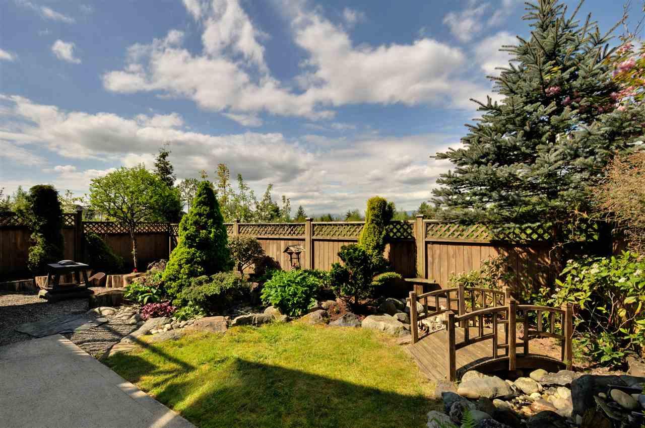 Backyard with beautiful landscaping