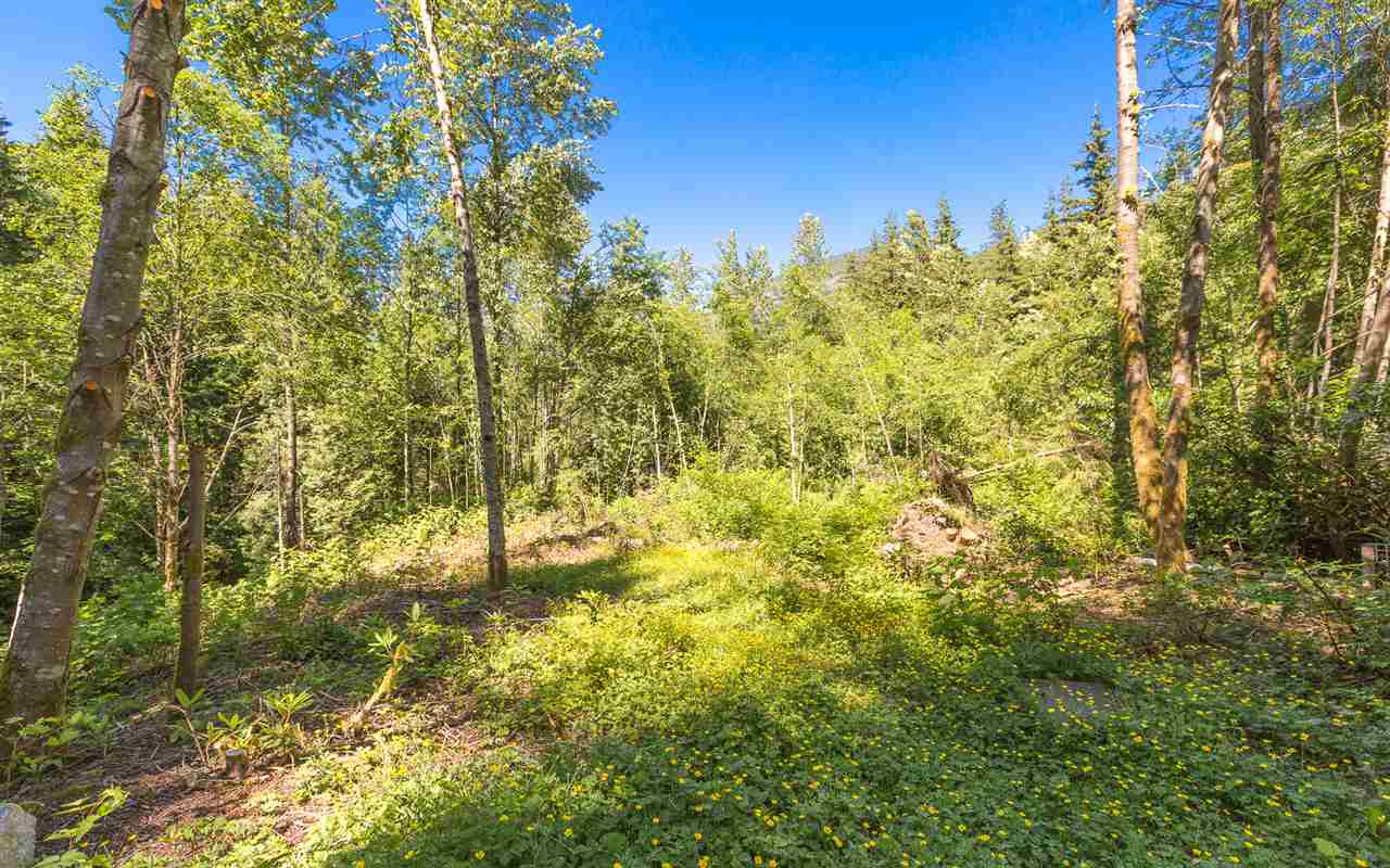 MASSIVE GREENBELT LOT!!!!! Countryside Village is a very location specific subdivision. This 7,309 sq ft is hands down the best lot available! Huge, beautiful backyard overlooks a GREENBELT AND CREEK!. Just steps away from the trail that takes you to Buntzen Lake which offers you amazing views and year round recreation, hiking, and swimming. Ten minutes to Port Moody city center, shopping and Skytrain. With your ideas, this lot is ready to bring your dream home into reality.
