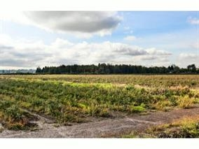 47.5 ACRE BLUEBERRY FARM located in prime Pitt Meadows location next to CPR intermodal yard. Mostly mature plants with approx 10 acres in 3 yr. old new varieties. 8 acres mature Blue Crop, 23 acres in mature Duke, 5 acres in 4 yr. old Draper, 2 acres in 4 yr. old Arora and 5 acres in 4 yr. old Liberty. House has 3 bedrooms and 1 bedroom in-law down.