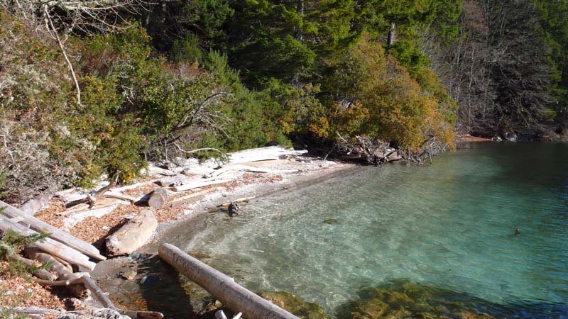 """Looking for an amazing oceanfront acreage (3.45 acres).  Frontage on crushed shell and sand beach, heirloom orchard, panoramic ocean/islands/mountain views ... sunny privacy! S/SW/W exposures. This parcel is part of a subdivision of an heirloom family holding ... carefully nurtured with a retention of the environmental beauties of this """"south end"""" location. The very best of Salt Spring! (Note: Old turn of last century summer cottage is not connected to services)"""